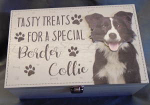 00061 Border Collie Treat Box 300 x 210