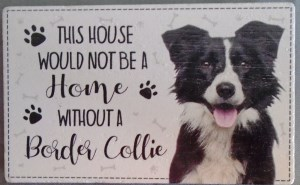 00063 Without Border Collie Magnet 300 x 185