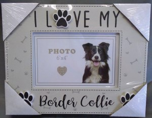 00069 Border Collie Box Photo Frame 300 x 234