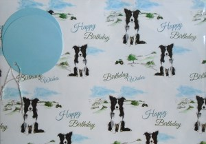 00130 Birthday Gift Wrap 300 x 209