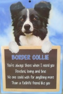 00216 3D Border Collie sign 202 x 300