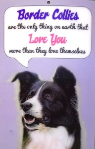 00222 Border Collies Love You 3D Hang up 192 x 300