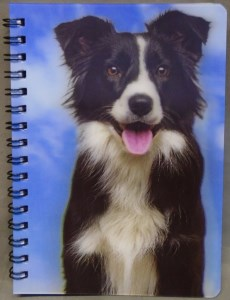 00224 Border Collie Note Book 230 x 300