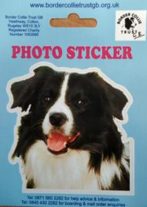 00229 BC photo sticker Sign