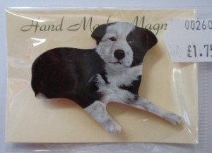 00260 Collie pup magnet 300 x 216