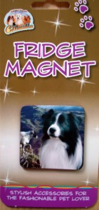 00278 Fridge magnet 141 x 300