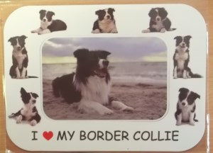 00279 Border Collie Magnetic Photo Frame 300 x 216