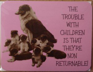 00392 The Trouble With Kids Magnet 300 x 234