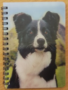 00546 3D Border Collie Hillside Notebook 226 x 300