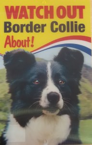 00559 3D Border Collie Hillside sign 191 x 300