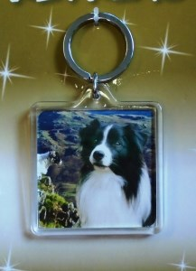 00764 Collie View Keyring 217 x 300
