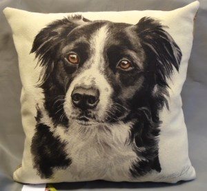 00786 Border Collie Cushion Front 300 x 277