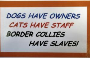 00832 Dogs have Owners Sign
