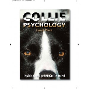 09011 Collie Psychology 300x300