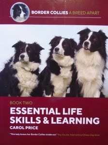 09015 Essential Life Skills Book original 223 x 300