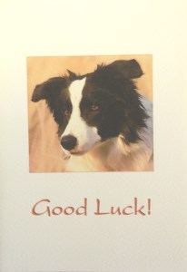 10068 Good Luck Card 206 x 300