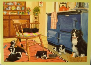 12023 Kitchen Collies 300 x 213