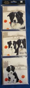 12552 Border Collie Mini Notecards Original 105 x 300