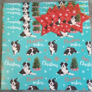15129 Collie Chrismas Wrap 300 x 300
