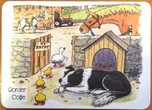 80016 Funny Farm Placemat 300 x 217