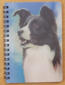 00547 3D Border Collie Sky View Notebook 230 x 300
