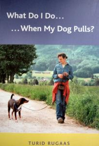 00552 What Do I Do When My Dog Pulls