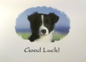 10062 Good Luck Card 300 x 217