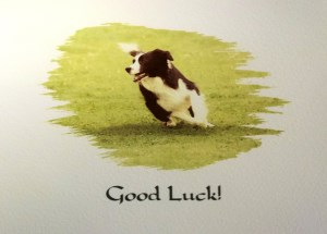10064 Good Luck Card 300 x 215