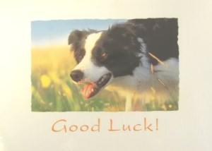 10067 Good Luck Card 300 x 214