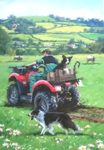 12046 Checking The Sheep 208 x 300