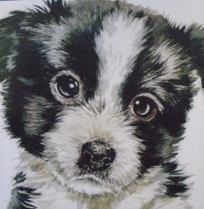 12560 Bobbie Puppy Dog Eyes 293 x 300