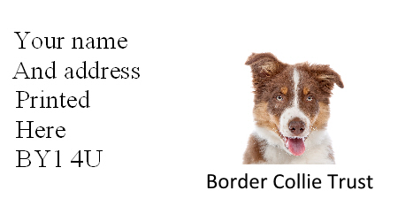 Mini address labels original